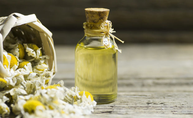 chamomile essential oil for ayurveda and essential oils