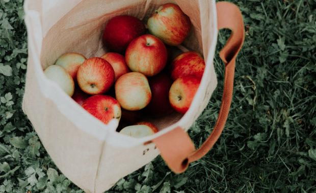 ayurveda fall apples