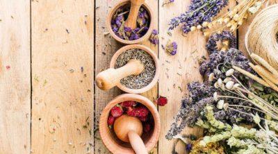 herbs for meditation
